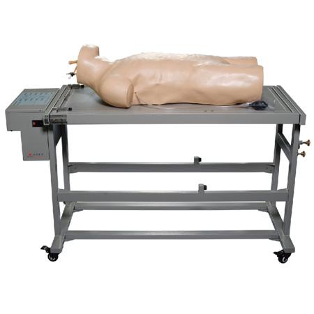 L260A高级综合穿刺术与叩诊检查技能训练模拟人